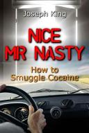 Nice Mr Nasty PDF