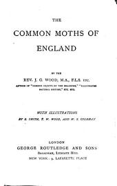 The common moths of England