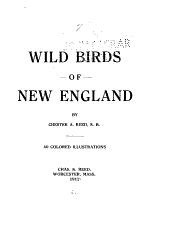 Wild Birds of New England
