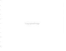 When I First Came to this Land PDF