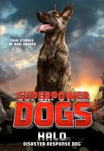 Superpower Dogs: Halo