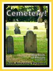 Just Cemeteries! vol. 1: Big Book of Photographs & Graves, Tombstones, Cemetery Pictures