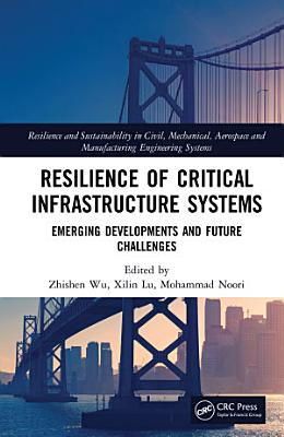 Resilience of Critical Infrastructure Systems