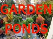 Garden Ponds: Artificially designed garden ponds with various aquatic plants and flowers