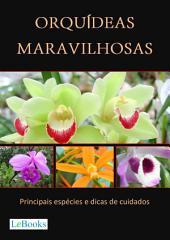 Orquídeas maravilhosas - Principais espécies e dicas de cuidados