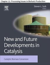 New and Future Developments in Catalysis: Chapter 12. Processing Issues in Biofuels Production