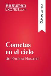 Cometas en el cielo de Khaled Hosseini (Guía de lectura): Resumen y análisis completo