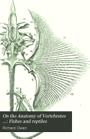 On the Anatomy of Vertebrates      Fishes and reptiles PDF