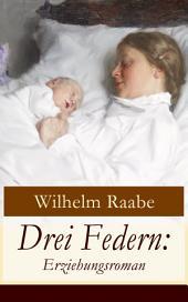 Drei Federn: Erziehungsroman (Vollständige Ausgabe)