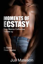 Moments of Ecstasy (Sexy Stories Collection Volume 29): 22 Erotic Short Stories