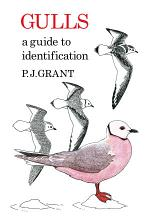Gulls: A Guide to Identification. 2nd Edition