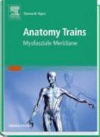 Anatomy trains PDF