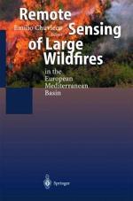 Remote Sensing of Large Wildfires