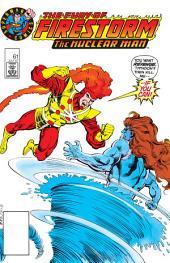 The Fury of Firestorm (1982-) #61