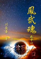 凤武魂之十一:灵识融合: 简体中文版