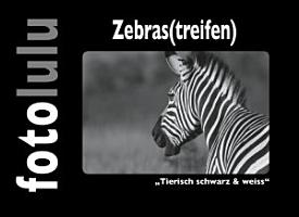 Zebras treifen  PDF