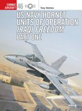 US Navy Hornet Units of Operation Iraqi Freedom (Part One)