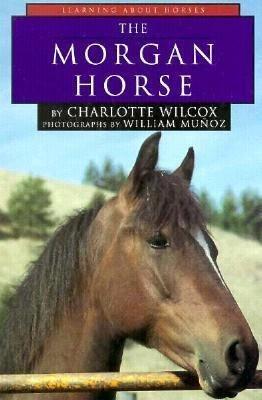 The Morgan Horse PDF