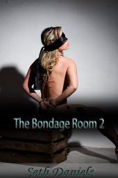 The Bondage Room 2: An Erotic BDSM Fantasy