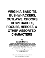 Virginia Bandits  Bushwackers  Outlaws  Crooks  Devils  Ghosts  Desperadoes   and Other Assorted Sundry Characters  PDF
