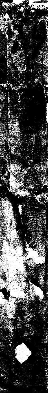 Enchiridion o Manual instrumento de salud contra el morbo articular que llaman Gota, y las demàs enfermedades, que por catarro, y destilacion de la cabeça se engendran en la persona y para reduzir, y conseruar en su perfeto estado de sanidad al temperamento humano...