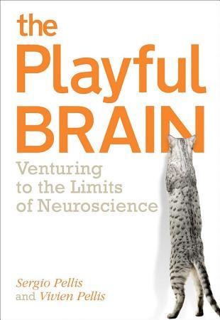 The Playful Brain PDF