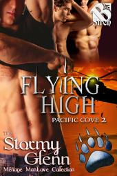 Flying High [Pacific Cove 2]