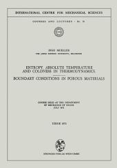 Entropy, Absolute Temperature and Coldness in Thermodynamics: Boundary Conditions in Porous Materials