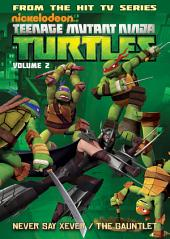 Teenage Mutant Ninja Turtles: Animated Vol. 2 - New Friend, Old Enemy