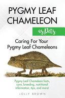 Pygmy Leaf Chameleons as Pets