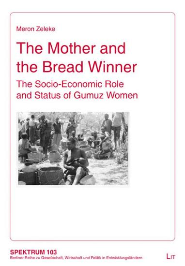 The Mother and the Bread Winner PDF