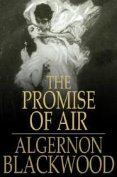 The Promise Of Air Book PDF