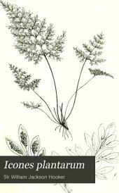 Icones Plantarum: Or Figures, with Brief Descriptive Characters and Remarks, of New Or Rare Plants, Selected from the Author's Herbarium, Volume 2