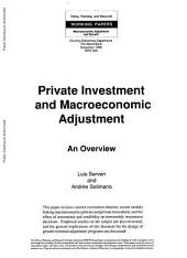 Private Investment and Macroeconomic Adjustment: An Overview