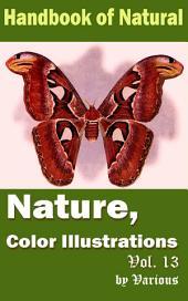 Nature, Color Illustrations Vol.13: Handbook of Nature