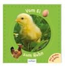 Vom Ei zum Huhn PDF