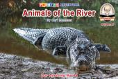 Animals of the River