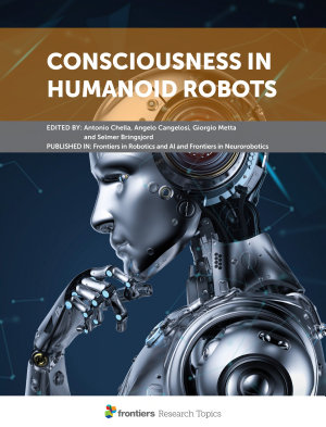 Consciousness in Humanoid Robots