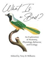 What Is a Bird  PDF