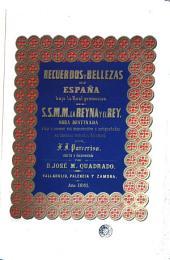 Recuerdos y bellezas de España (Valladolid, Palencia y Zamora): Volumen 2