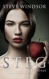 Steg: A Dark Futuristic Religious Fantasy (Prologue)