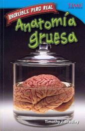 Anatomia Gruesa = Gross Anatomy