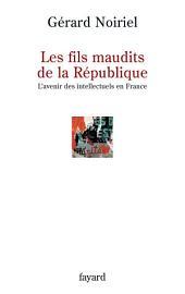 Les fils maudits de la République: L'avenir des intellectuels en France