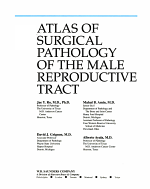 Atlas of Surgical Pathology of the Male Reproductive Tract PDF