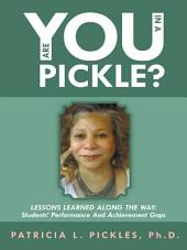 Are You In a Pickle?: Lessons Learned Along The Way: Students' Performance And Achievement Gaps