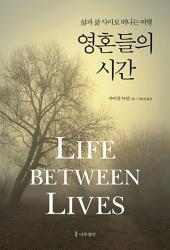 영혼들의 시간: 삶과 삶 사이로 떠나는 여행