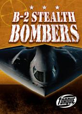 B-2 Stealth Bombers