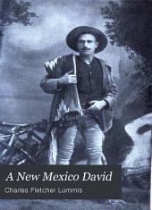A New Mexico David: And Other Stories and Sketches of the Southwest