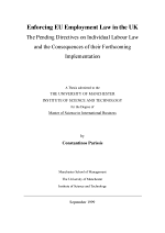 Enforcing EU employment law in the UK : the pending directives on individual labour law and the consequences of their forthcoming implementation