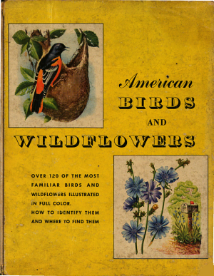 American Birds and Wildflowers